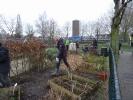 Intenationale school Breda_6
